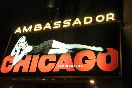 Ambassador Theatre: Ingresso Ambassador Theater