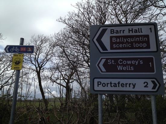Contea di Down, UK: Roadsigns seen on Ards peninsula