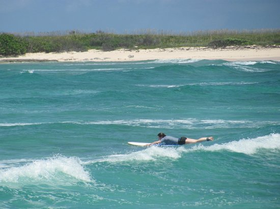 Bahamas Out Island Adventures - Day Trips: swimming out past the breakers