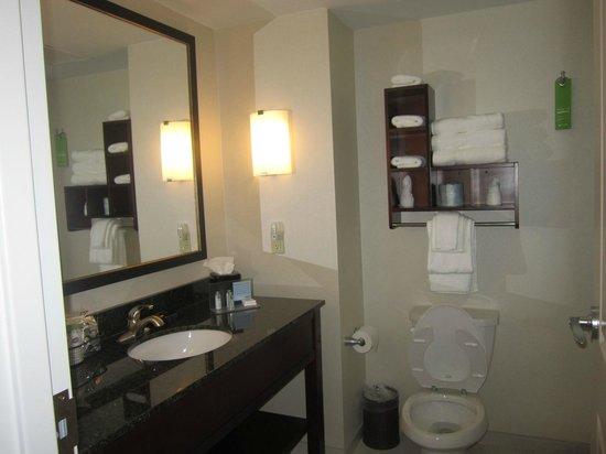 Hampton Inn Columbus/South-Fort Benning: bath