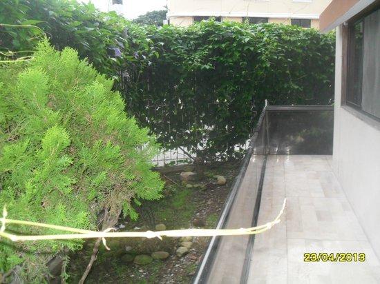 Murali Hostal : patio