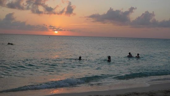 The Westin Grand Cayman Seven Mile Beach Resort & Spa: Swimming during the sunset