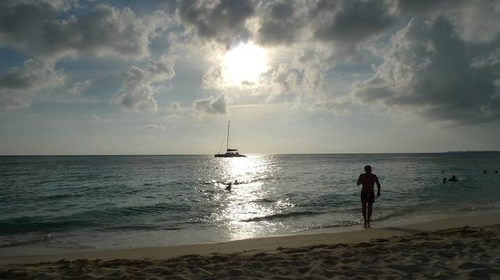 The Westin Grand Cayman Seven Mile Beach Resort & Spa: Sunset sail by Red Sail Spots
