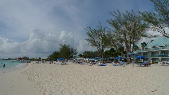The Westin Grand Cayman Seven Mile Beach Resort & Spa: Umbrellas: all are always taken