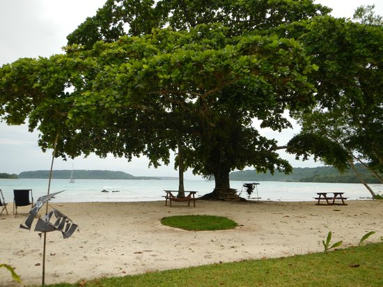 Velit Bay: Peaceful & clean