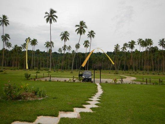 Velit Bay: the carpark from the restaurant
