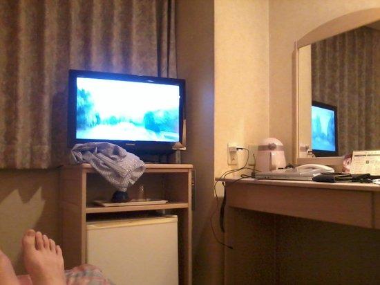 Kotoni Green Hotel: シングルルーム