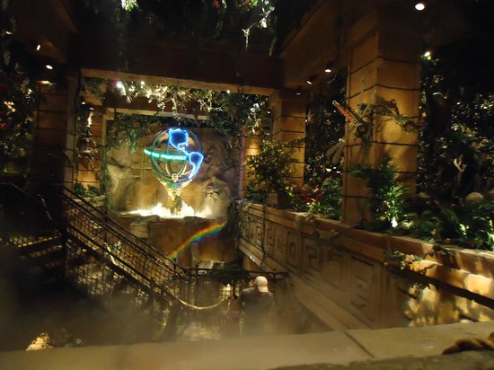 Rainforest Cafe Downtown Disney Closed