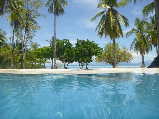 Dos Palmas Island Resort & Spa: view from in pool