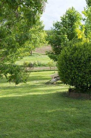 Chambres d'hotes La Plaine: jardin