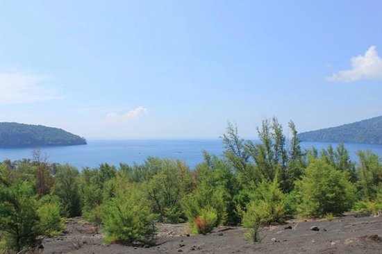 Krakatau Volcano (Krakatoa): Looking out over the bay