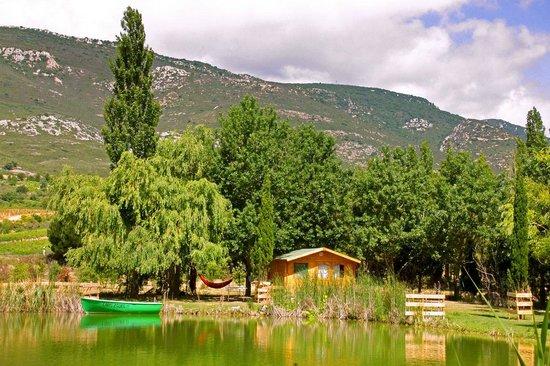 Domaine La Peiriere : Le lac