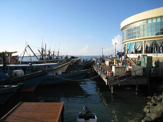 New Market: Fishing boats docked next to the market
