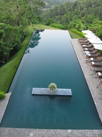 Alila Ubud: The amazing infinity pool - in the top 50 in the world