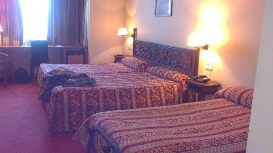 Hotel Don Luis: Habitación