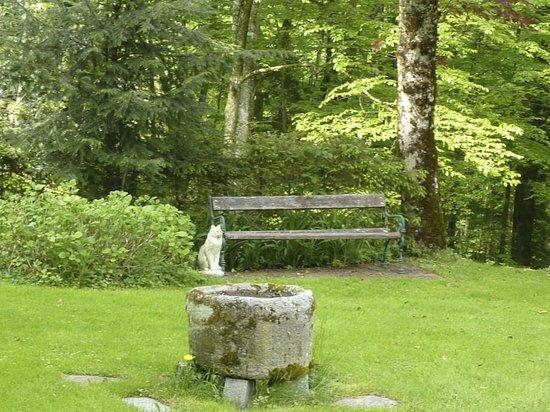 Waldpension Goschlseben : Ruhe Ruhe Ruhe