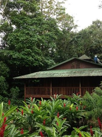 Selva Verde Lodge: Rooms are in scattered timber buildings, comfortable and very well ventilated.