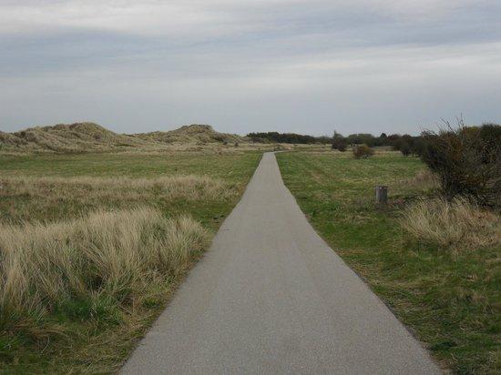 Presthaven Holiday Park: Nature reserve adjacent to site