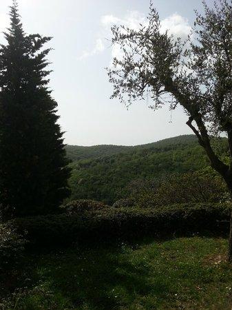 Il Borgo di Vescine - Relais del Chianti: area