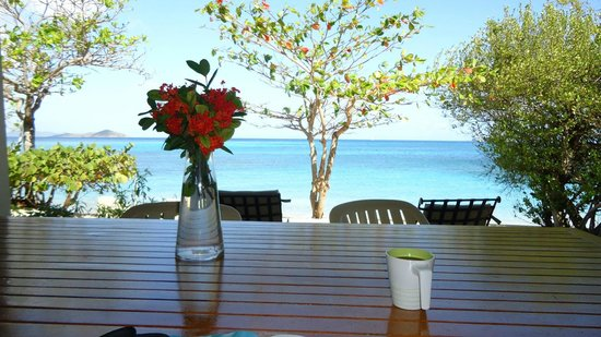 Mango Bay Resort : View from our patio