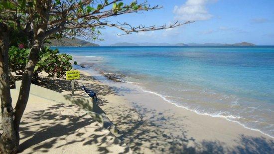 Mango Bay Resort : Beach - left