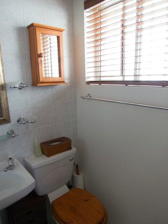 Bluegum Hill Guesthouse and Apartments: Bathroom, room 1