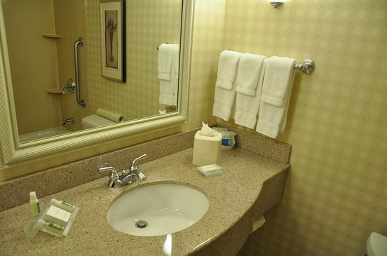 Hilton Garden Inn Sonoma County Airport: Bathroom