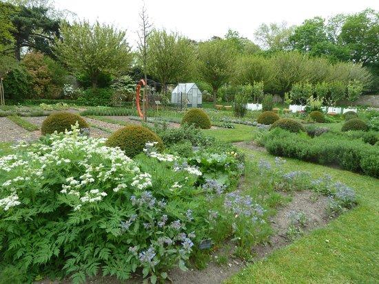 Parc du Domaine de Madame Elisabeth : Le potager dans l'Orangerie du Domaine de Montreuil