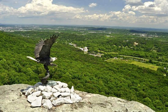 Lookout Mountain, GA: eagle
