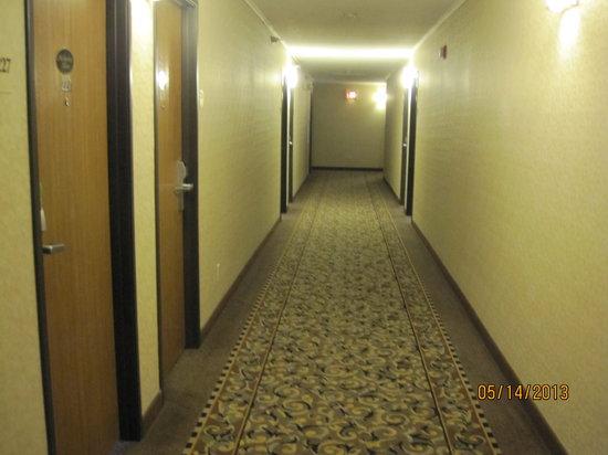Comfort Inn I-90: Hallway
