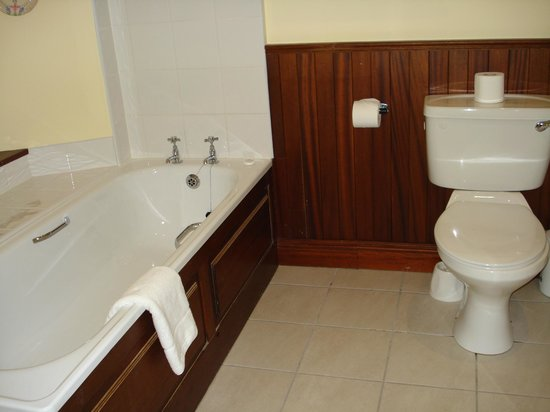 Lough Inagh Lodge: Bathroom in Jonathon Swift room