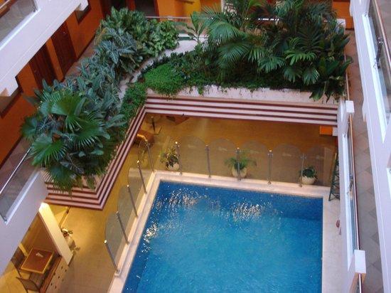 Victoria Regia Hotel & Suites: PISCINA