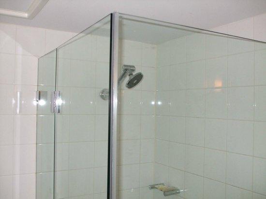 ibis Perth: shower