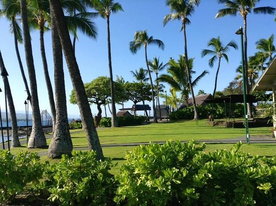 Courtyard by Marriott King Kamehameha's Kona Beach Hotel: ビーチのつづき