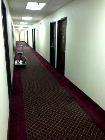 Americas Best Value Inn Yosemite-Oakhurst: corridor