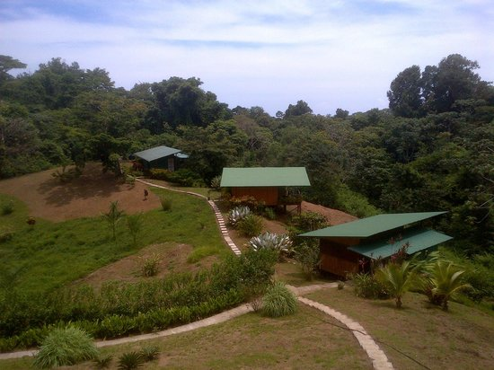 Finca Maresia: View from the dining area