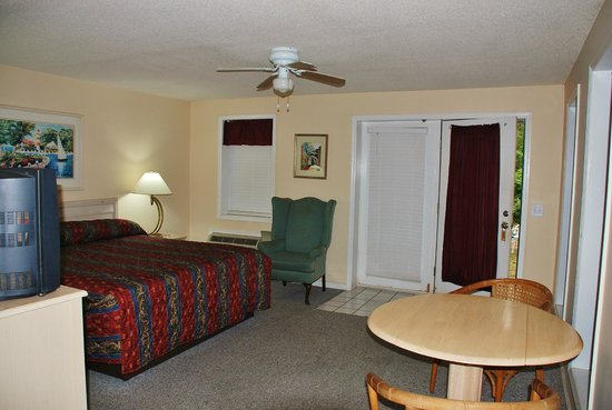 Brookwood Motel : Alamo Cottage Room