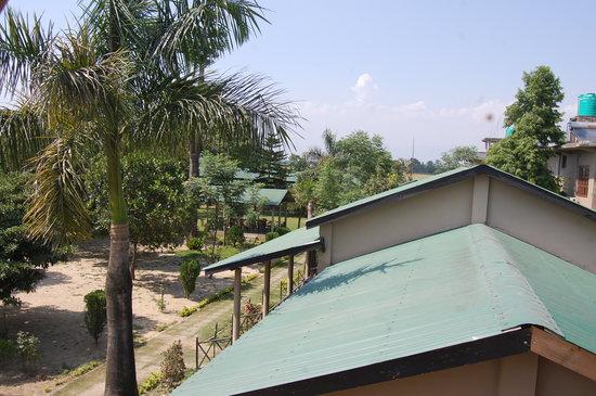 Tiger Residency Resort : Resort