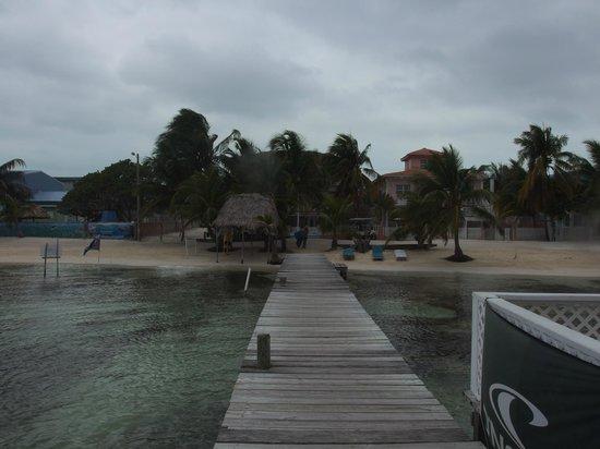 Ocean Tide Beach Resort: vista al hotel desde el centro de buceo