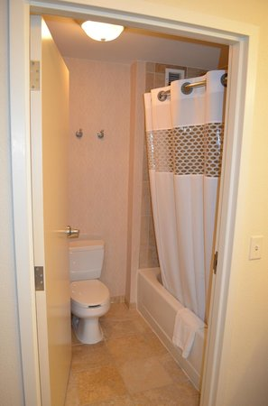Hampton Inn & Suites Washington-Dulles International Airport : Clean bathroom