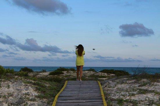 Sol Cayo Largo: Hacia la playa