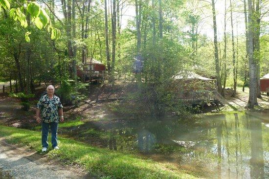 Falling Waters Adventure Resort: The Yurts # 5 & 6