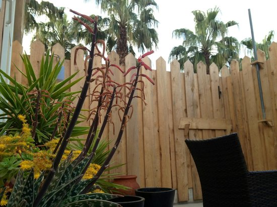 La Pinede Hotel : terrasse