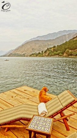 Laguna Lodge Eco-Resort & Nature Reserve: perfect place to lien the sun and relax with a great book