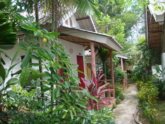 Khaolak Banana Bungalows: All bungalows surrounded by lots of greenery