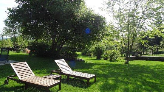 B&B Melizio: Dans le jardin (suite)