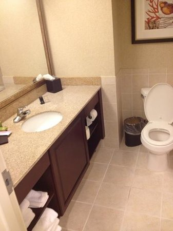 Embassy Suites by Hilton Fort Myers - Estero: Bathroom