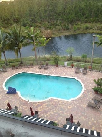 Embassy Suites by Hilton Fort Myers - Estero: Pool view from room