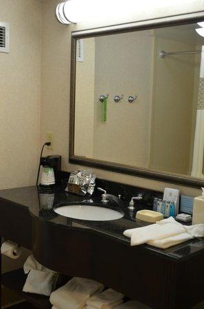 Hampton Inn Knoxville-East: Bathroom