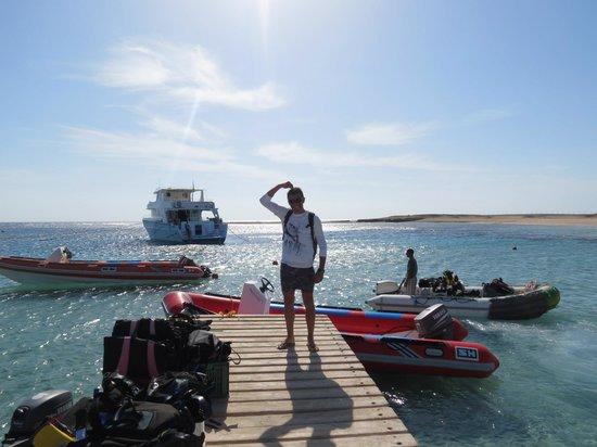 Marsa Shagra Village: Diving2